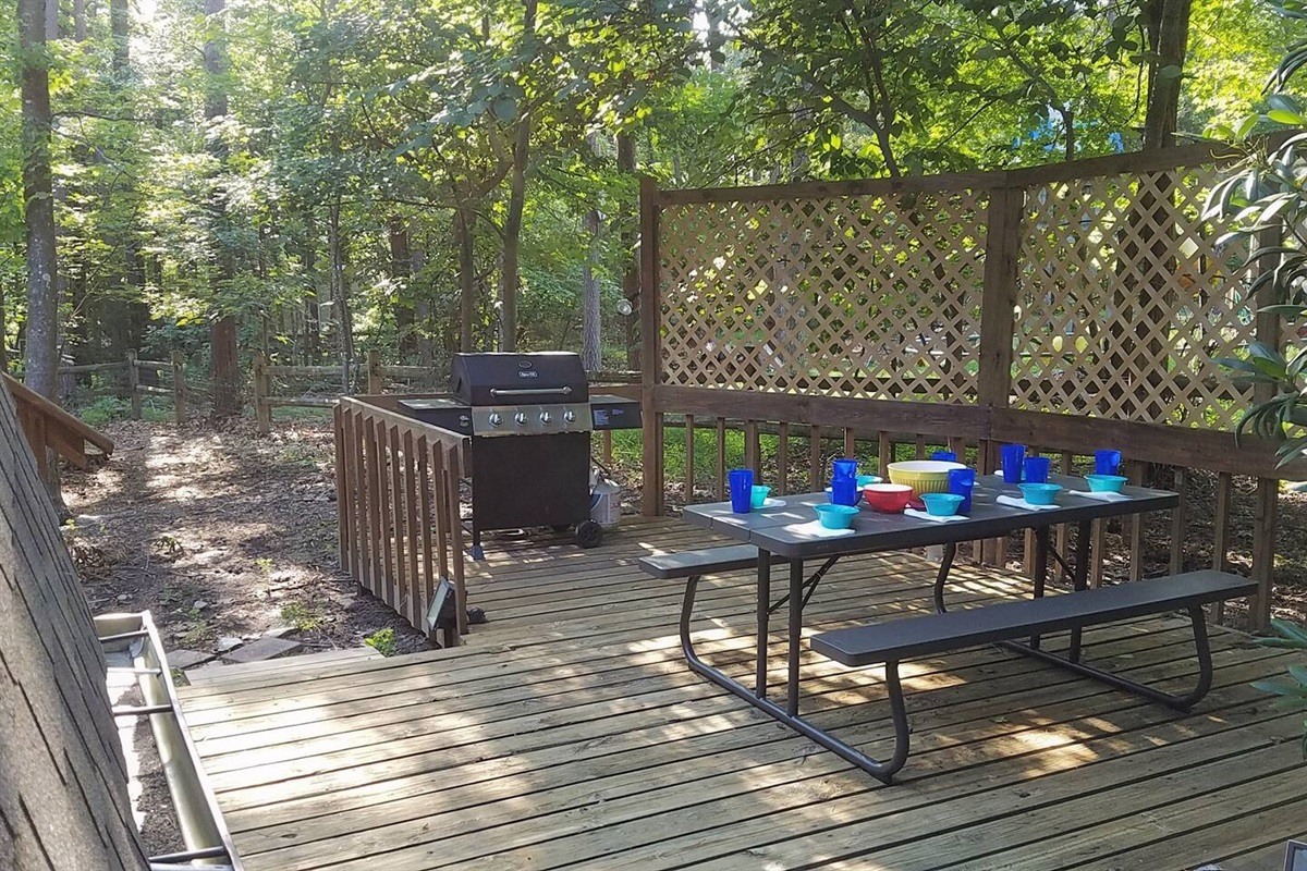 Outdoor grill and table