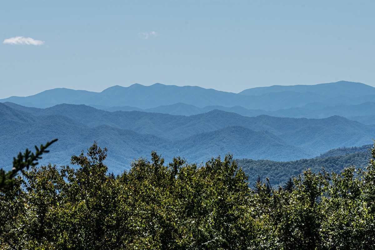Beautiful mountain views as you drive to Laurel Valley