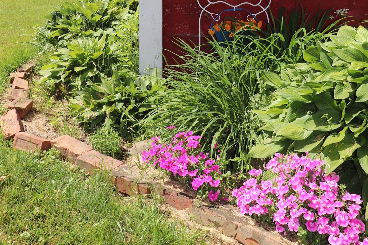 Beautiful gardens throughout the yard.